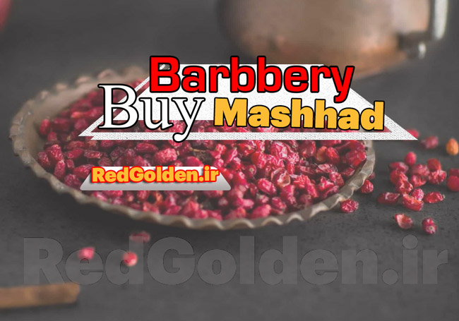 Buy Mashhad Barbbery